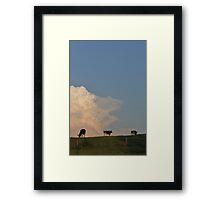 Hilltop Cows Framed Print