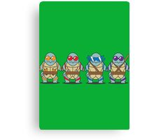 Teenage Mutant Squirtle Squad Canvas Print