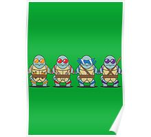 Teenage Mutant Squirtle Squad Poster