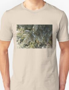 Mother Nature's Christmas Decorations - Pine Branches T-Shirt