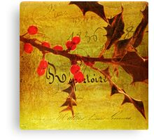 Red Berries at Xmas Canvas Print