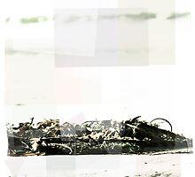 Seaweed  by moriahhodges