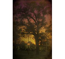 The Evening Air Photographic Print