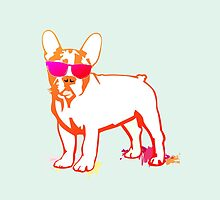 French Bulldog Heulo by Doggenhaus