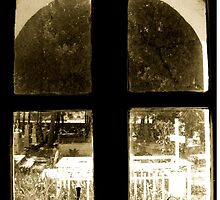 Window To The Souls by Vicki Spindler (VHS Photography)