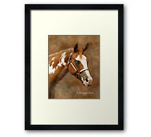 Zip For Scotch Framed Print