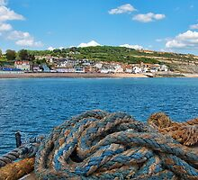 View From The Cobb ~ Lyme Regis by Susie Peek