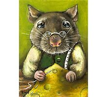 Rat the tailor Photographic Print