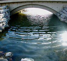 Bridge by Amy Brookins