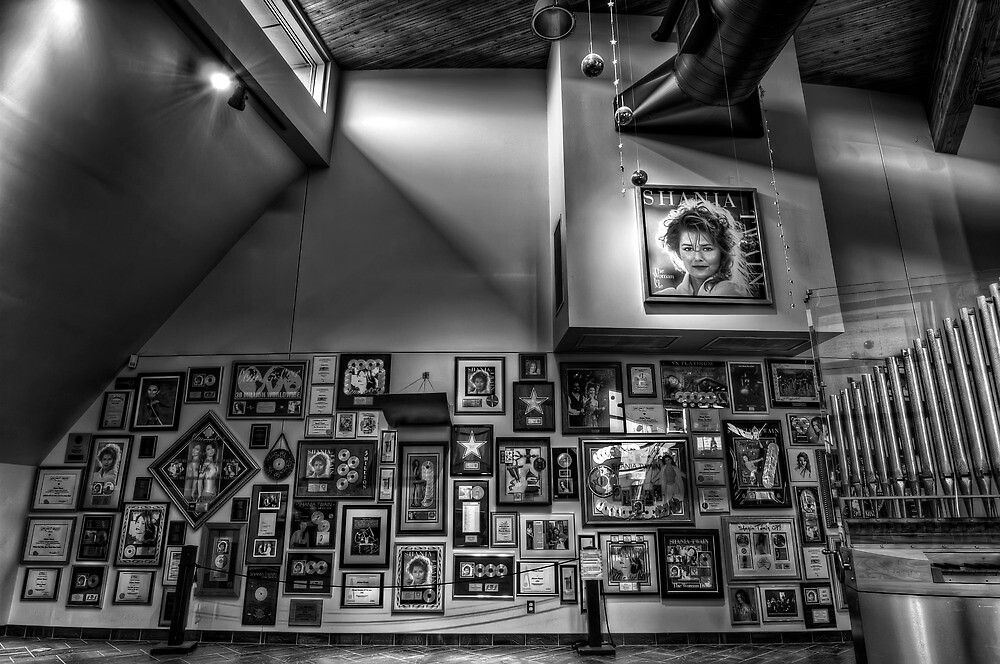 Shania Twain Center- Timmins, ON, Canada by THECUCKOOPHOTOG