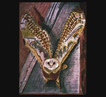 Ghost Owl  in flight colored pencils drawing by JoAnnFineArt
