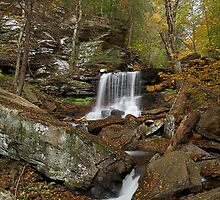 B. Reynolds Falls (Autumn) by Tim Devine