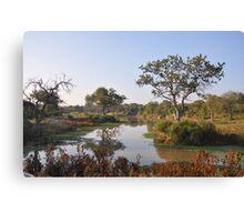 Safari Landscape Canvas Print