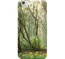 Mythical Place HDR iPhone Case/Skin