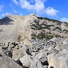 Turtle mountain slide by zumi