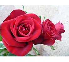 Three Red Roses Photographic Print