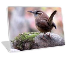 CAROLINA WREN Laptop Skin