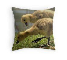 Big Baby Gosling Throw Pillow