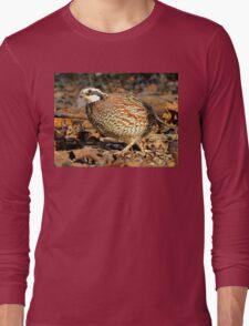 I'm A Male Quail! Long Sleeve T-Shirt