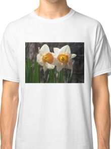 In Conversation - a Couple of Daffodils Huddled Together Classic T-Shirt