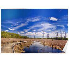Barren Wetlands_1 Poster