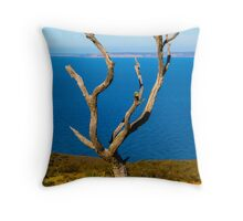 Nature's landmark Throw Pillow