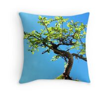 Bonsai! Throw Pillow
