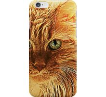 Marmalade Cat With Curvy Whiskers iPhone Case/Skin