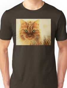 Marmalade Cat With Curvy Whiskers Unisex T-Shirt