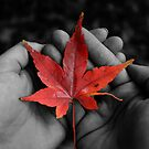 Autumn love by Jade  Douglas