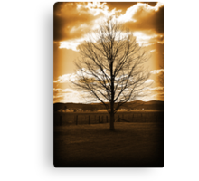 As precious as gold! Canvas Print