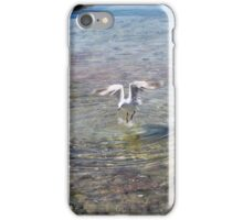 Nature - seagull just a drop in the ocean iPhone Case/Skin