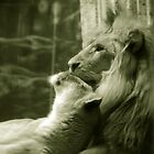Just the two of us by Jonathan George