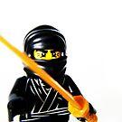 Ninja by HRLambert