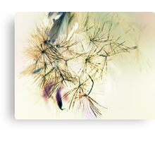 Whispers  In The Wind - Softly, Softly - Canvas Print