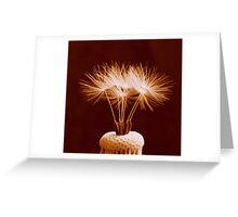 Seed Crown Greeting Card