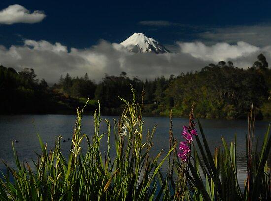 Lake Flowers by Peter Kurdulija