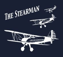 Another Stearman T by AviatorFilly