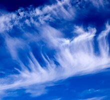 Skyscape by friendlydragon