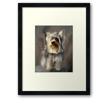 Geronimo's Prettiest Pose Framed Print