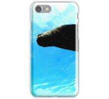 Sea Lion from Below iPhone Case/Skin