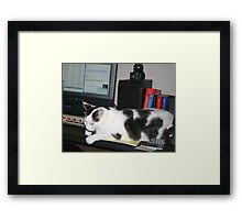 Yes...I Ate That Darn Mouse!! Framed Print