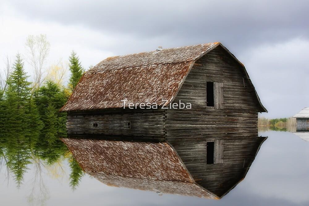 Flooded Log Barn by Teresa Zieba