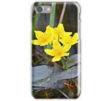 Marsh Marigolds iPhone Case/Skin