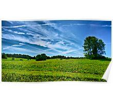 Spring Landscape in NH Poster