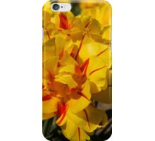 Showy Sunny Yellow Tulips iPhone Case/Skin