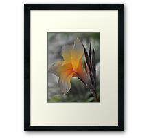 Stand Alone Beauty Framed Print