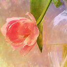 The Tulip by Brenda Boisvert