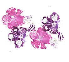 Pink and Purple Photographic Print