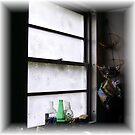 kitchen window by Sandra Hopko